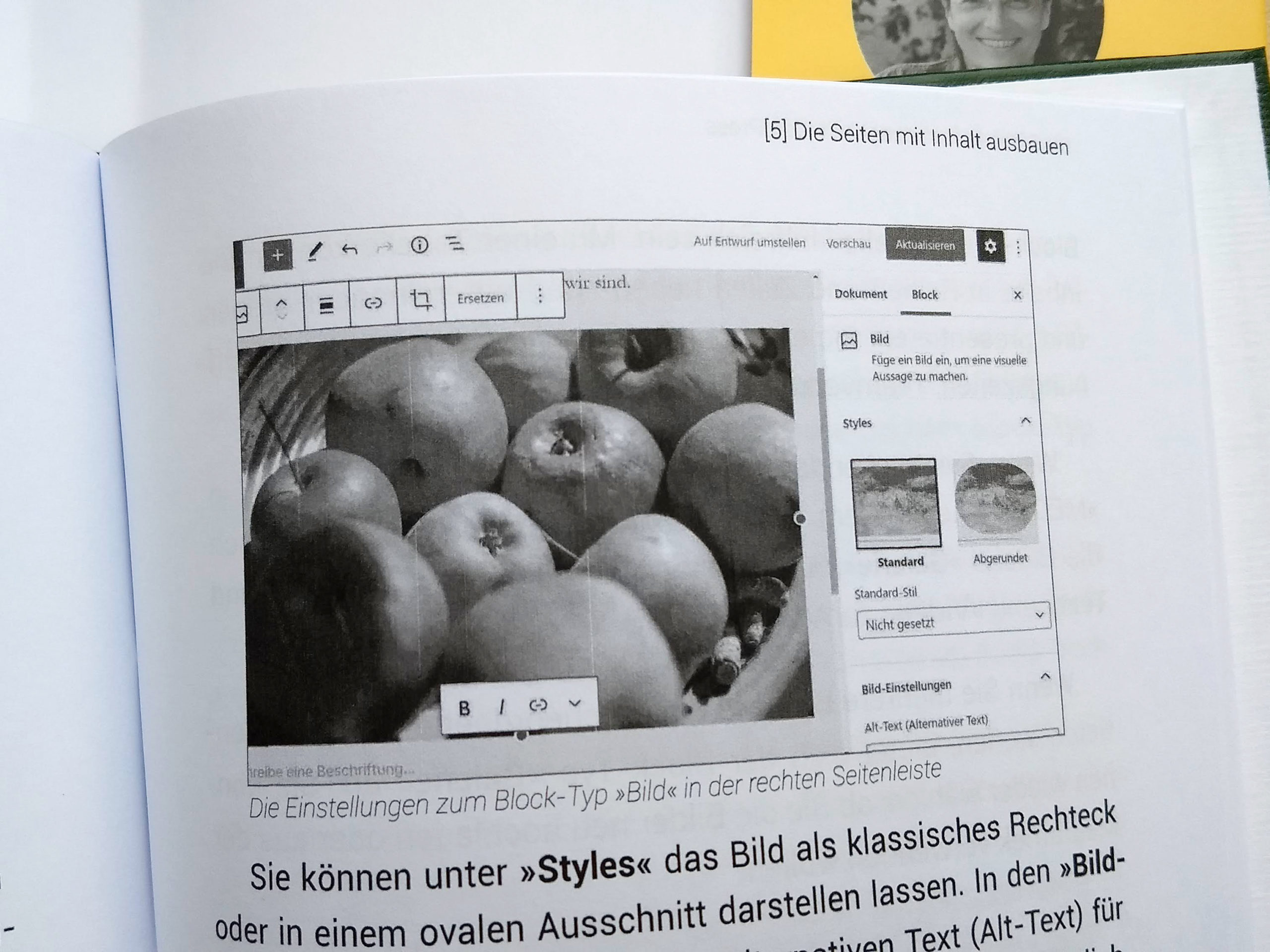Innenteil WordPressbuch mit leichten Streifen auf den Grafiken