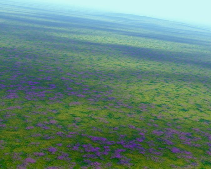 Neue Landschaften